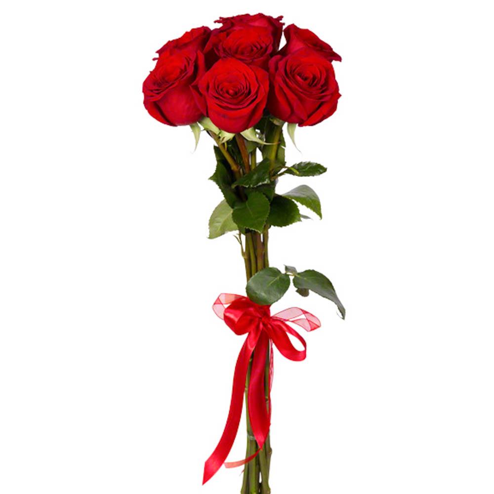 Букет из 7 красных роз с атласной лентой  26 BYN