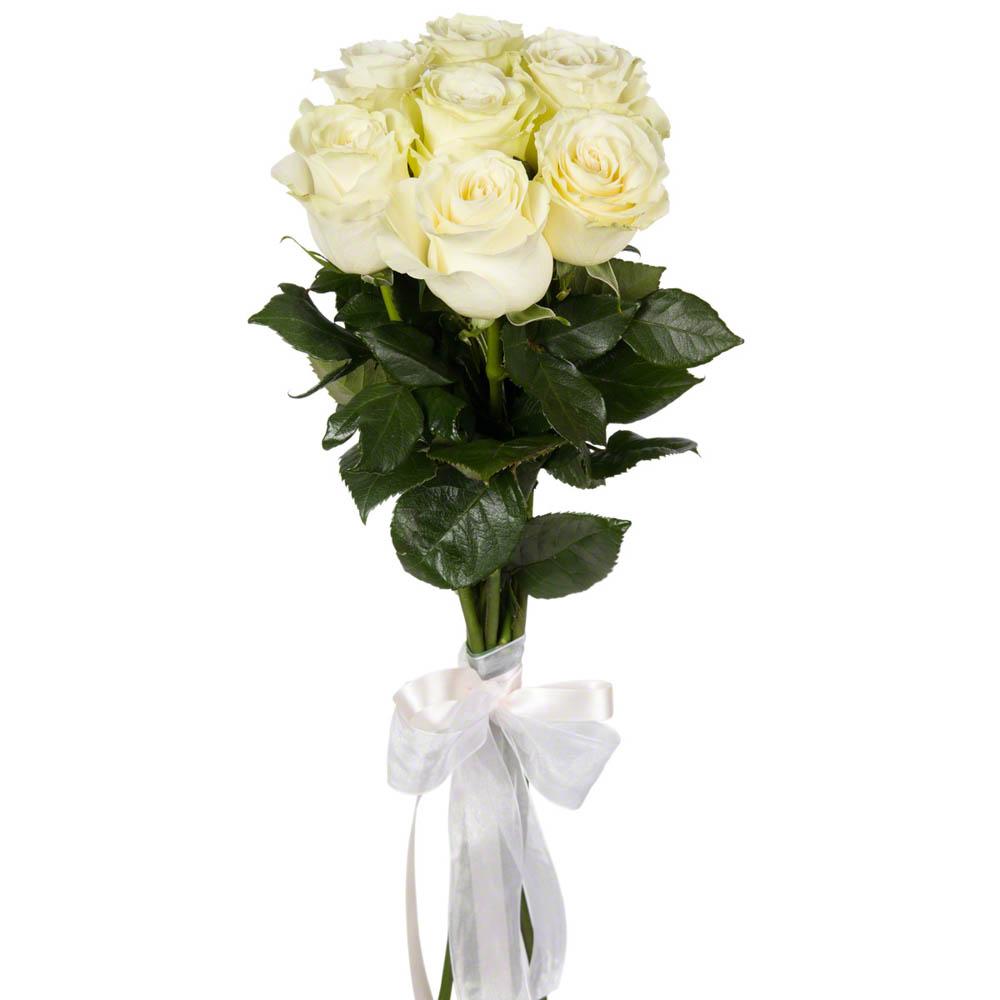 Букет из 7 белых роз с атласной лентой  26 BYN
